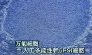 WS000439.JPG
